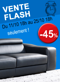canapé en vente flash