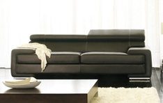 Canapé cuir Darwin