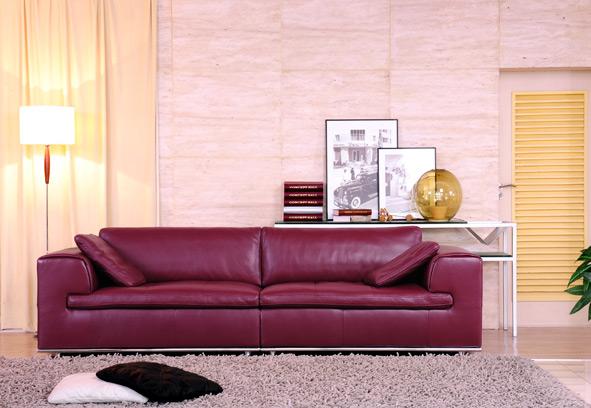 le canap cuir avantages et inconv nients canap show. Black Bedroom Furniture Sets. Home Design Ideas