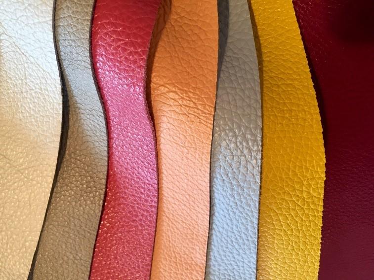 nombreuses couleurs de cuirs
